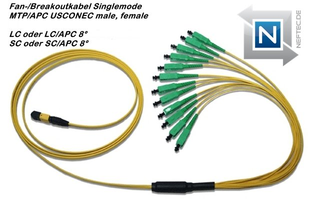 system-mpo-mtp-fiber-optic-fanout-kabel-sc-apc-neftec-usconec-connector